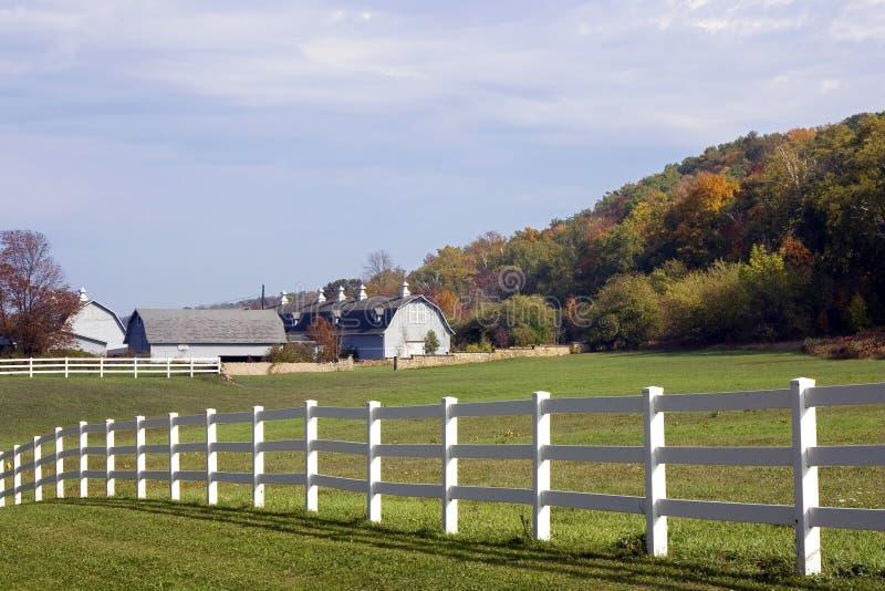 De melkveehouderij van Wisconsin stock afbeeldingen