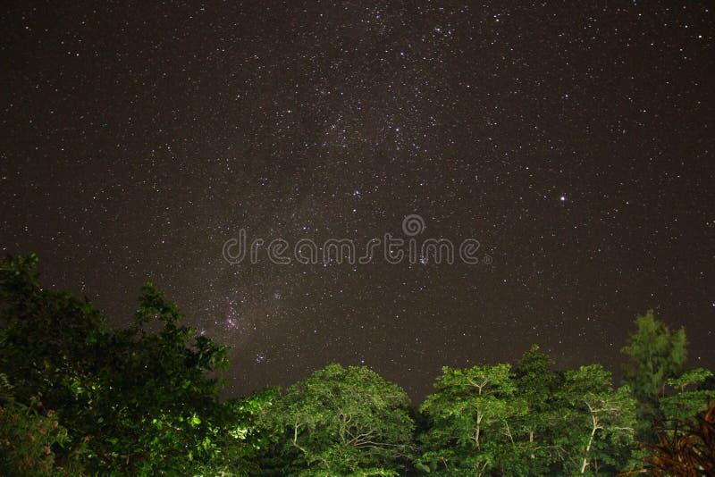 De Melkweg van Seychellen wordt gezien die stock afbeeldingen