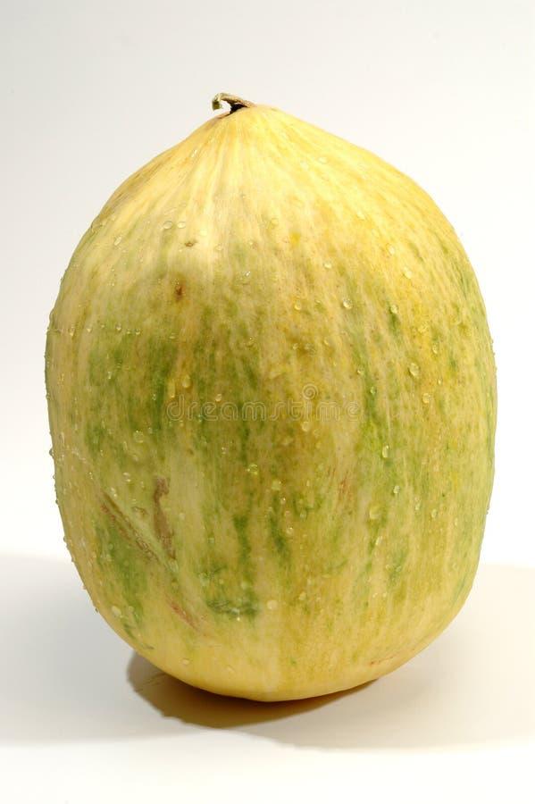 De meloen van Crenshaw stock afbeeldingen