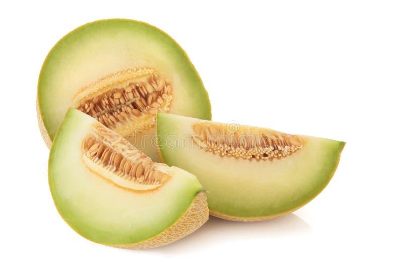De Meloen van Galia royalty-vrije stock afbeeldingen