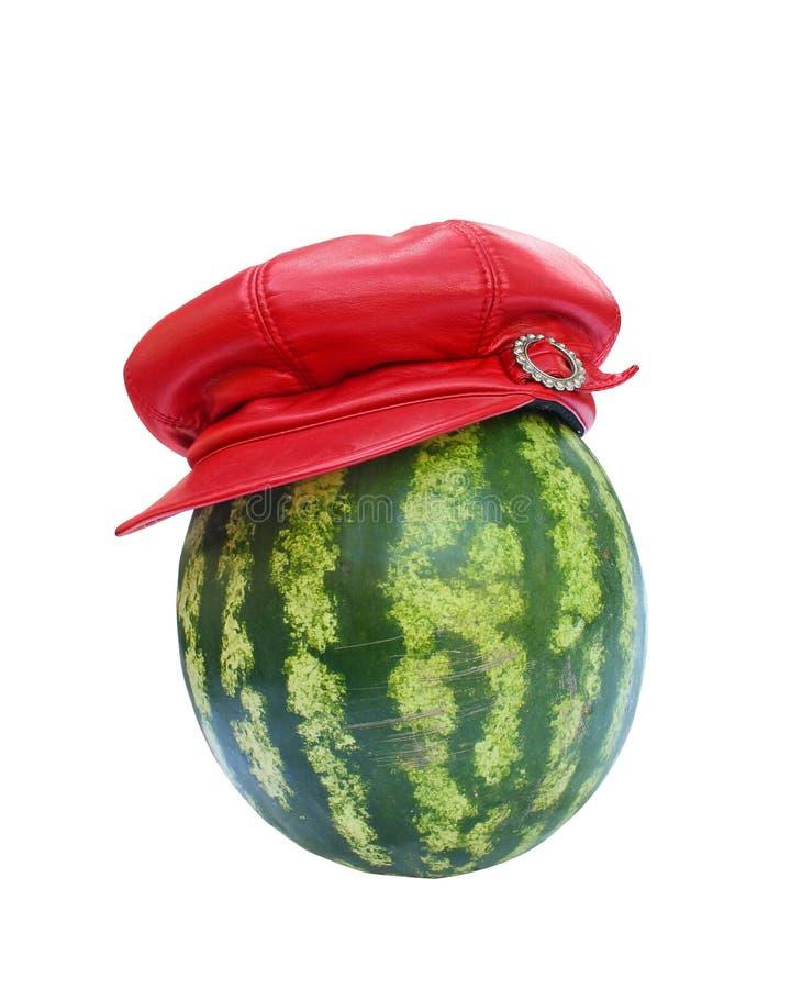 De meloen van het water in hoed stock fotografie
