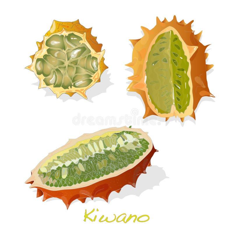 De meloen van Kiwano op witte achtergrond royalty-vrije illustratie