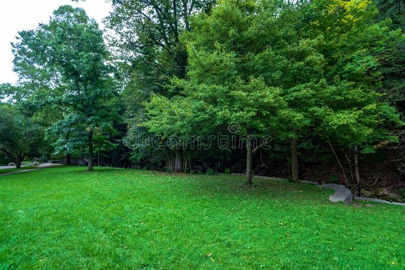 De Memorial Vuurtoren van Robert H Het Park van de Tremanstaat: Kloofsleep royalty-vrije stock foto