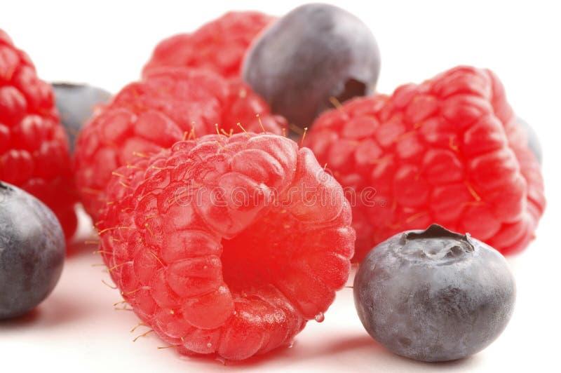 Berry Mix royalty-vrije stock afbeelding