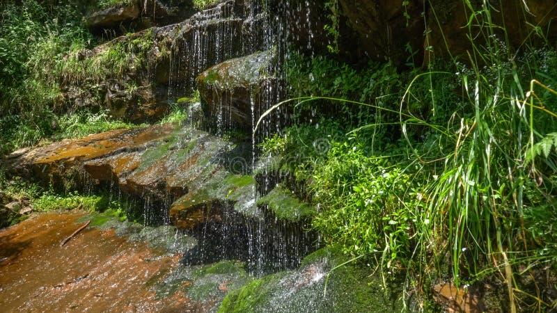 De mening van de cascadewatervallen in Topli, Servië stock foto's