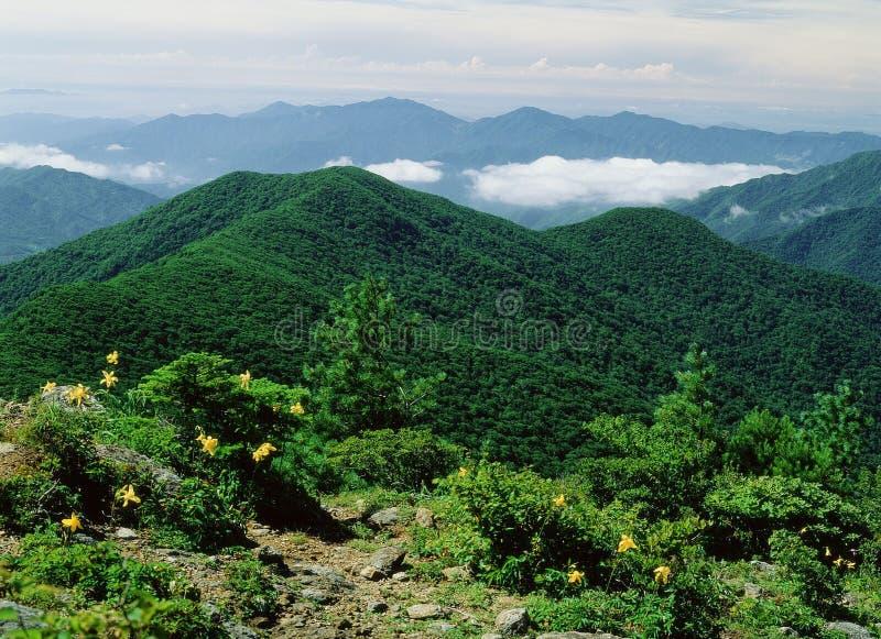 De Mening van de berg royalty-vrije stock afbeeldingen