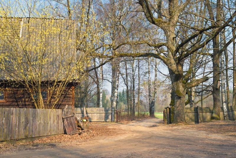 De Mening van de de lentebinnenplaats van Traditioneel Russisch Houten Huis met een Houten Omheining, Berken en Vogelhuizen Gesch royalty-vrije stock foto's