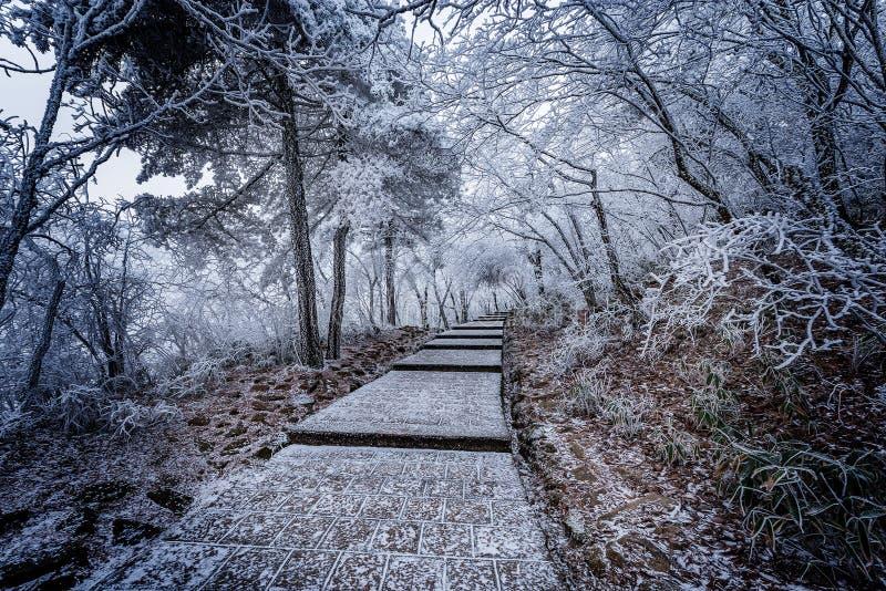 De mening van de de wintertrap in het Nationale park van Huangshan royalty-vrije stock foto