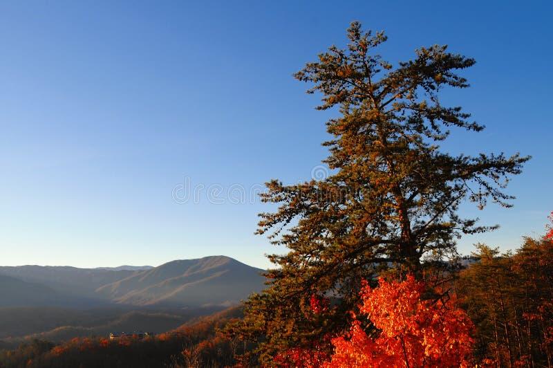 De mening van de herfst lanscape stock afbeelding