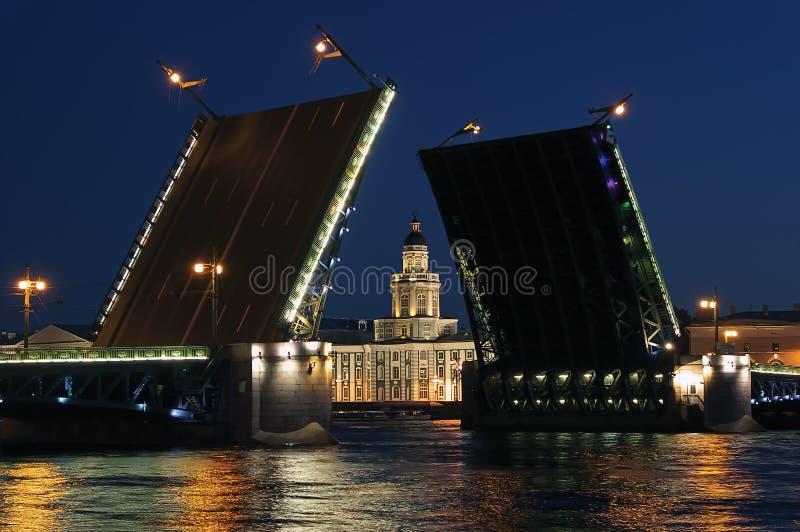 De mening van de nacht van de Brug van het Paleis. St. Petersburg royalty-vrije stock afbeeldingen
