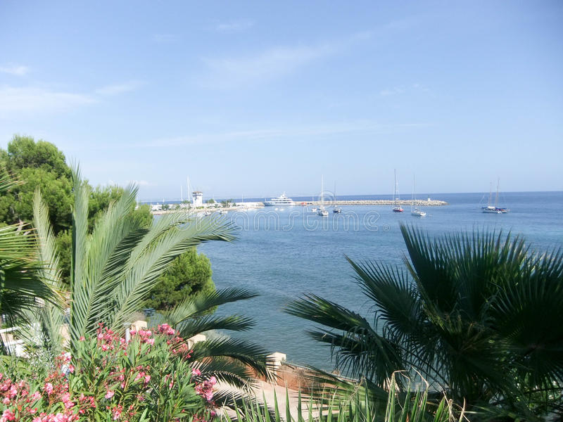 De mening van de Palmade Mallorca haven royalty-vrije stock foto's
