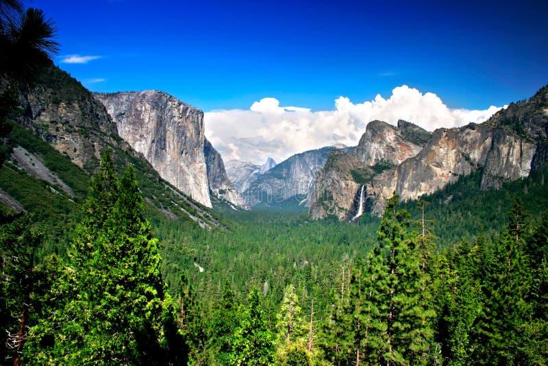 De Mening van de tunnel, Nationaal Park Yosemite stock foto's