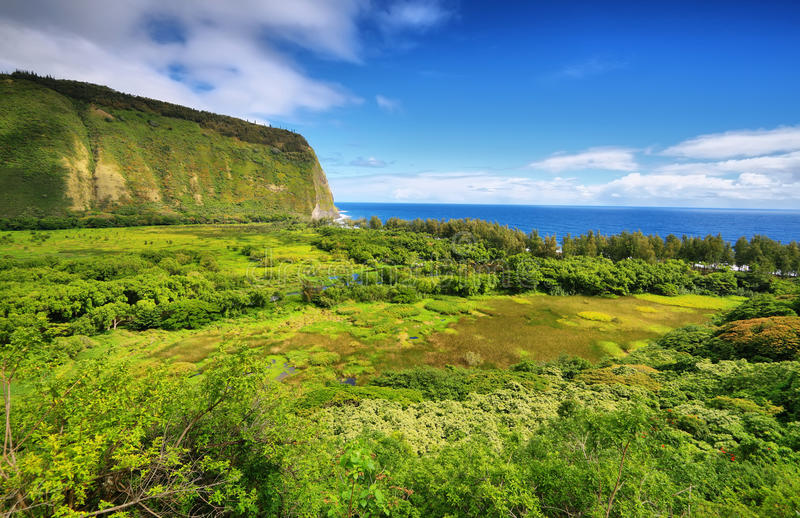 De mening van de Waipiovallei in Groot eiland stock afbeelding