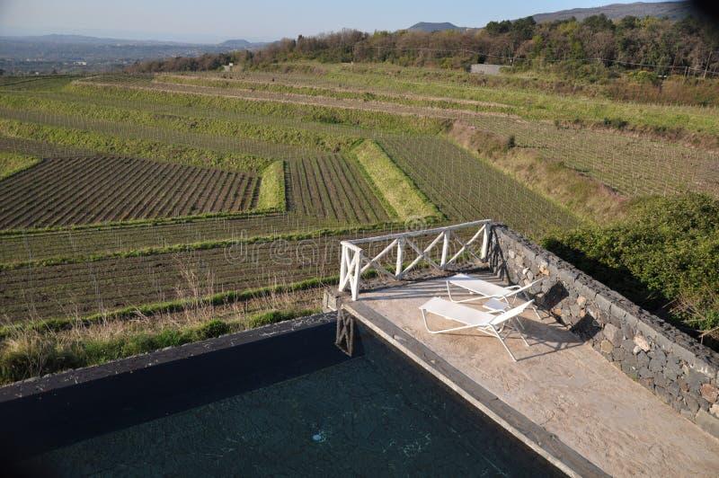 De mening van de wijnmakerijpool over de wijngaarden Etna Sicily Italy stock afbeeldingen