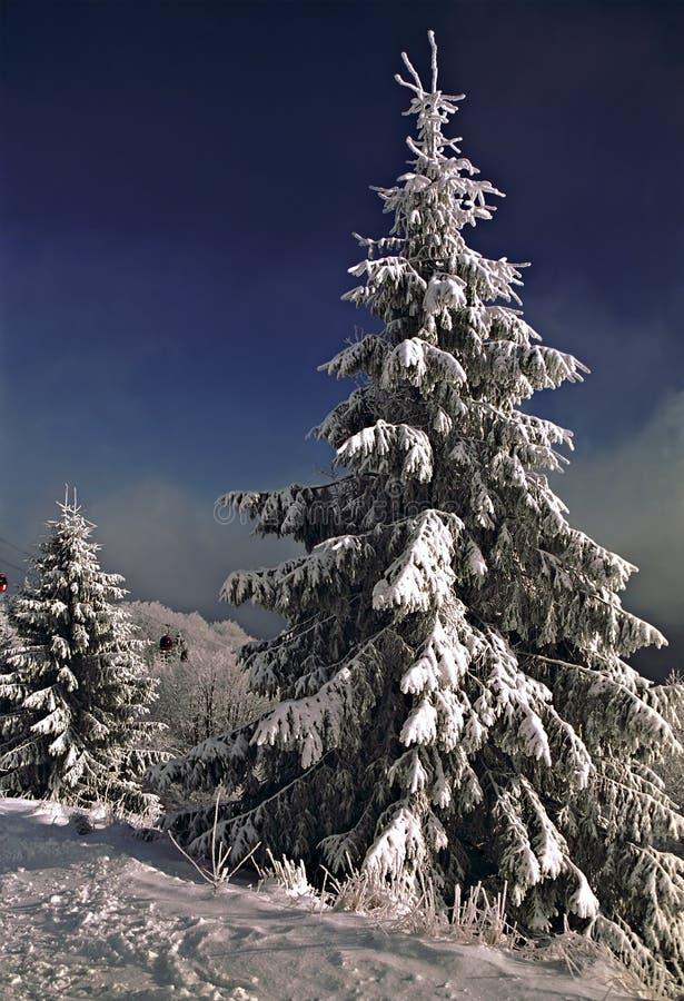 De mening van de winter royalty-vrije stock fotografie