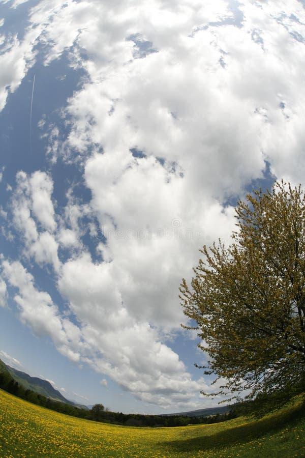 De mening van Fisheye van bewolkte hemel stock afbeelding