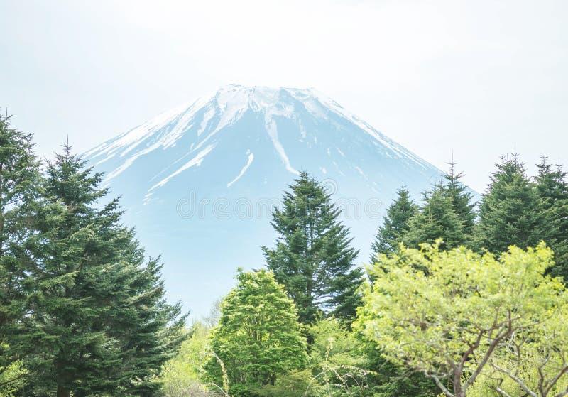 De mening van de Fujiberg in Japan in regenachtige dag stock foto's