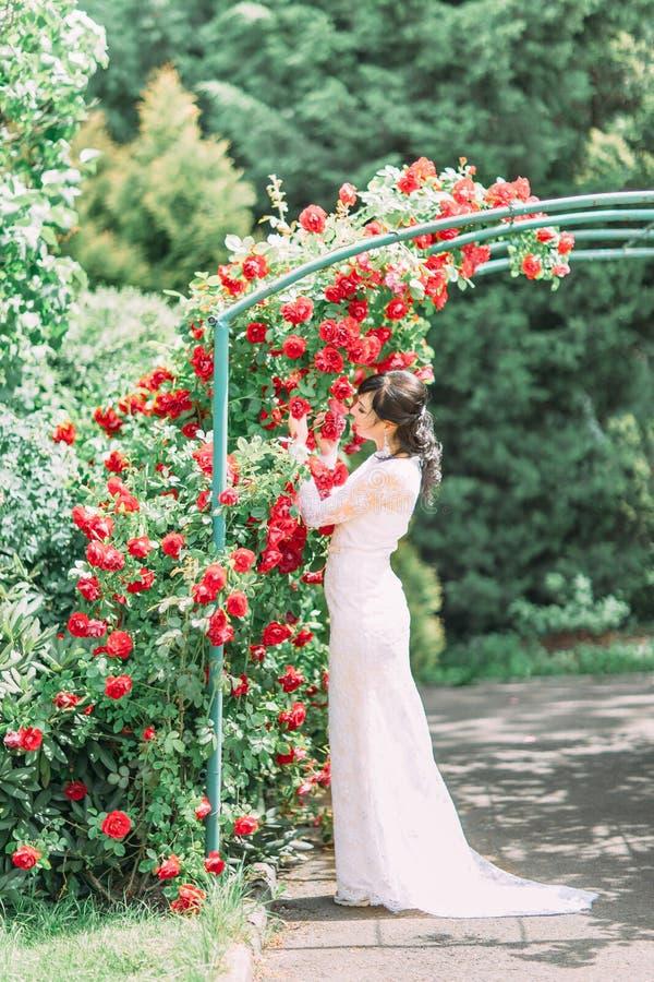 De mening van gemiddelde lengte van de bruid die die inder de boog bevinden met rode rozen wordt behandeld Zij ruikt en wat betre stock foto's