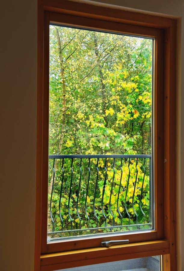 De mening van de herfst Oranje bladeren op zelfs groen gras royalty-vrije stock fotografie