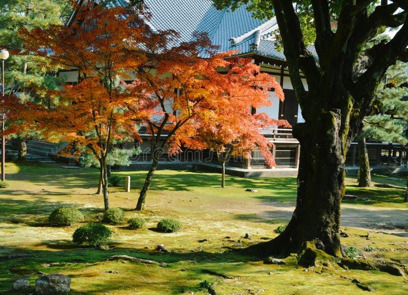 De mening van de de herfsttuin van Daikakuji-tempel, Kyoto, Japan stock foto's