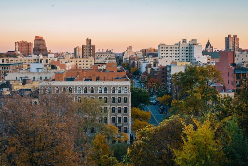 De mening van de de herfstzonsondergang over Harlem van Morningside-Hoogten de Stad in van Manhattan, New York royalty-vrije stock afbeeldingen