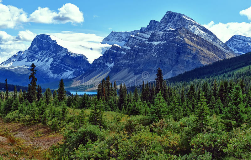 De Mening van het Meer van de boog bij Nationaal Park Banff royalty-vrije stock foto
