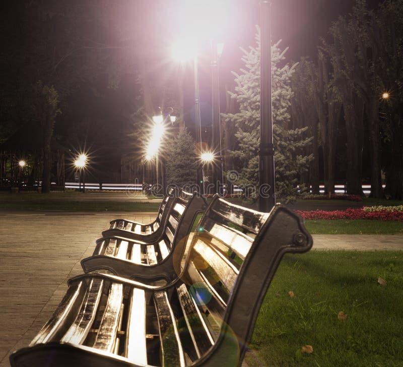 De mening van het nachtpark van drie banken en lichten stock afbeelding