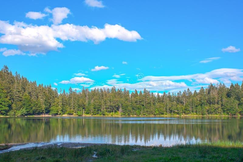 De mening van het panoramalandschap over meer en pijnboomboom en wolken zwart bosduitsland royalty-vrije stock foto