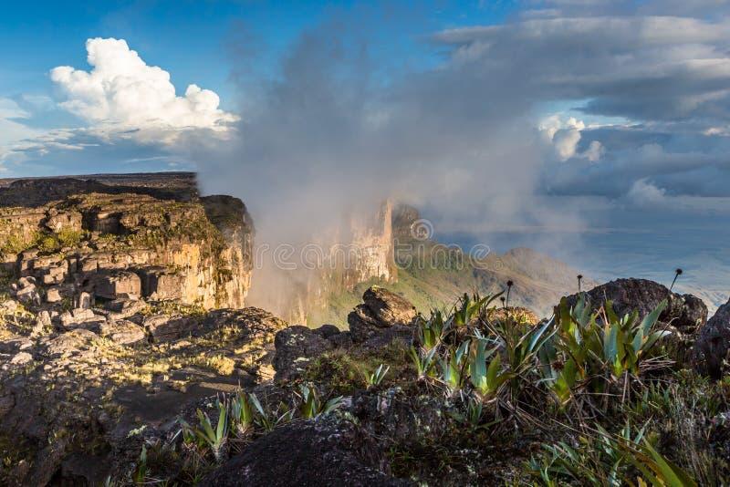 De mening van het plateau van Roraima op Grote Sabana - Venezuela, Latijns Amerika stock foto