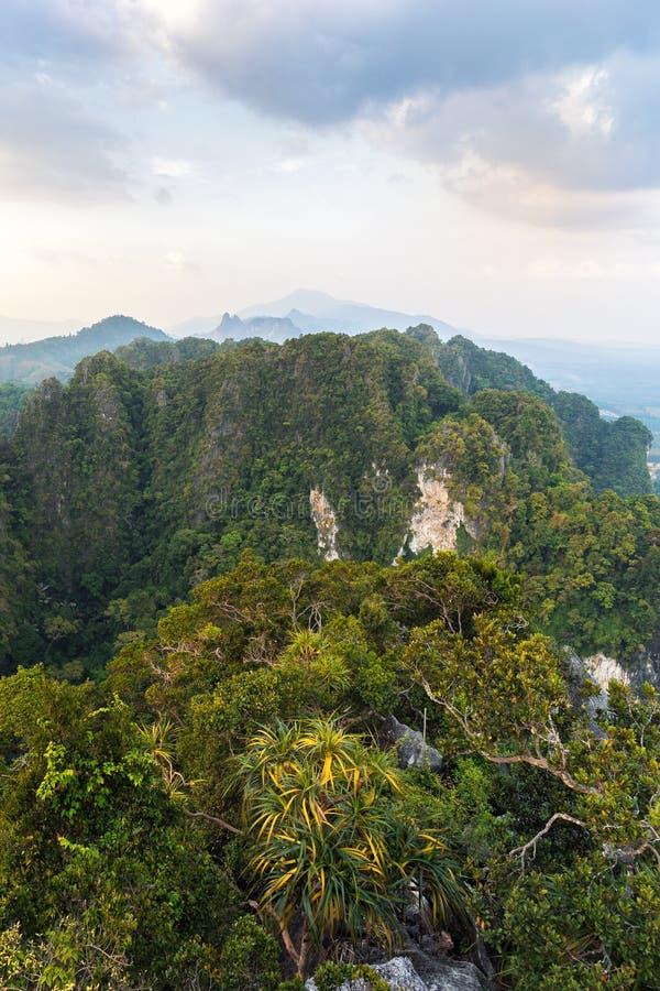 De mening van de hoogte op wildernis en bergen met tropische groen en bomen wordt behandeld die stock afbeeldingen