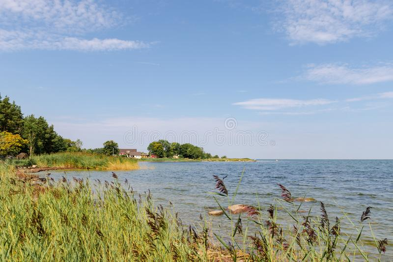 De mening van mooi ziet landschap in Saaremaa, Estland royalty-vrije stock afbeelding