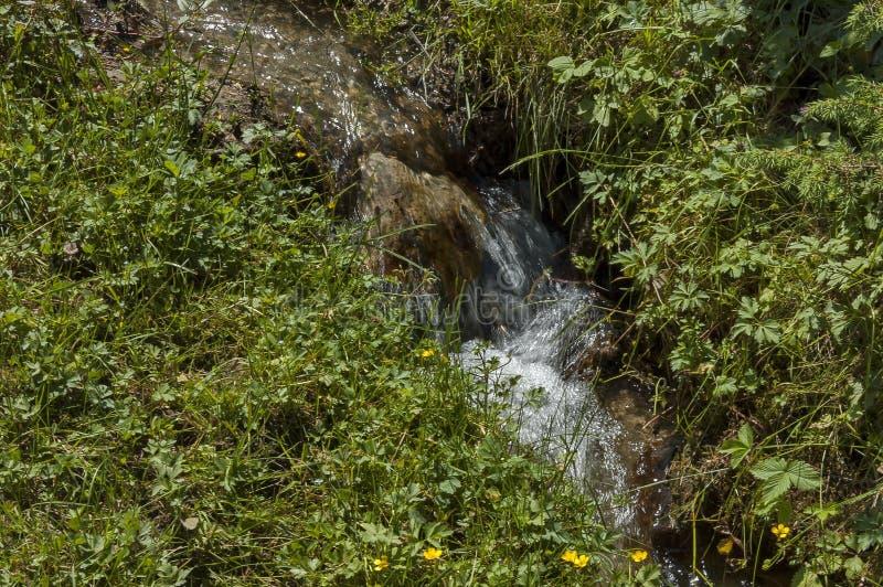 De mening van motie vertroebelde waterstroom met waterval door open plek in Rila-berg stock fotografie