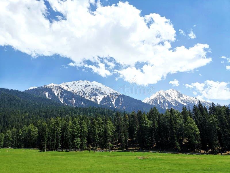 De mening van Pahalgambergen, India Kashmir royalty-vrije stock foto