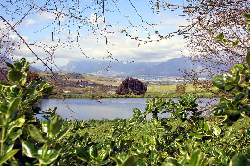 De Mening van Stellenbosch royalty-vrije stock foto's