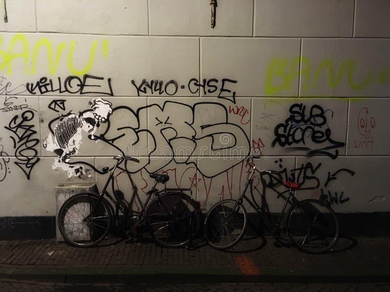 De mening van de straat in Amsterdam royalty-vrije stock foto's