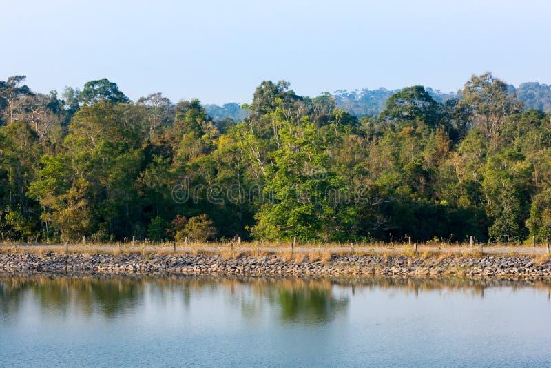 de mening van de waterkant van reservoir bij het nationale park van Khaoyai royalty-vrije stock afbeeldingen