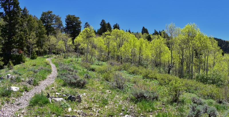 De meningen van de wandelingsweg van de Oquirrh-Bergen langs Wasatch Front Rocky Mountains, door Kennecott Rio Tinto Copper mijn, stock foto