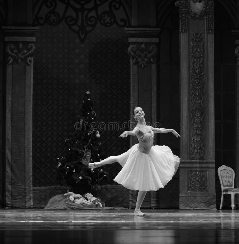 De mens de elf-Balletnotekraker royalty-vrije stock foto