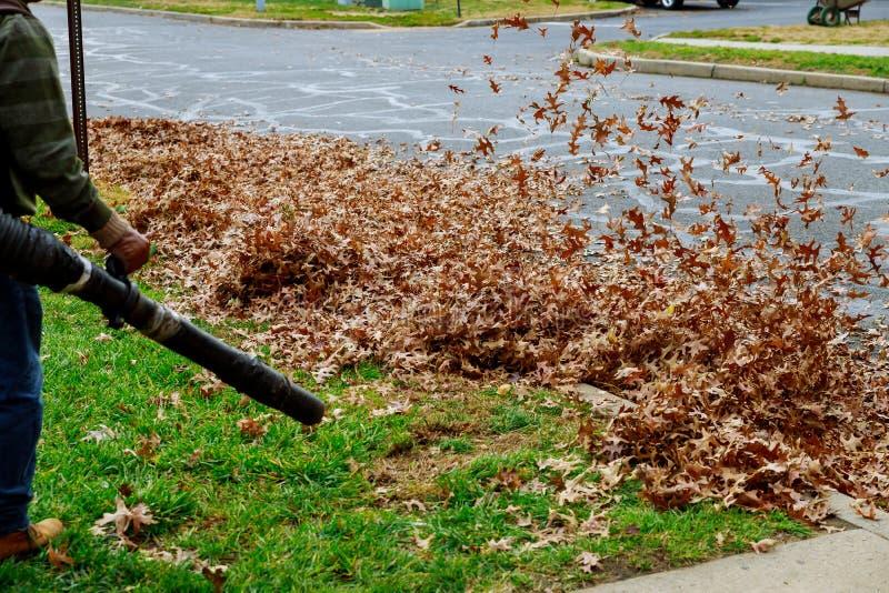 De mens in het werk blaast gele en rode gevallen de herfstbladeren in het schoonmaken van yard met windturbine weg, die gazon sch royalty-vrije stock foto's
