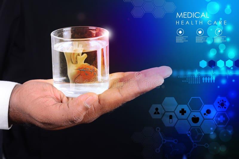 De mens houdt een hart in glas water stock fotografie