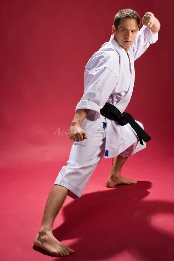 De mens in Karate stelt stock afbeelding