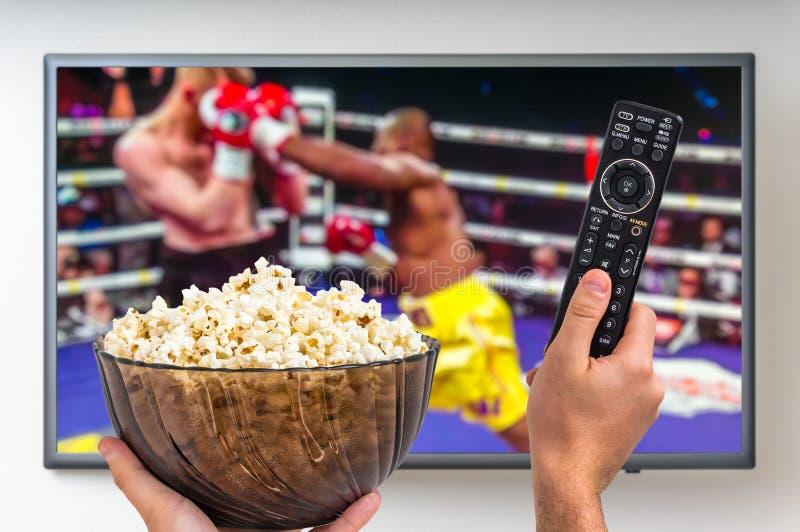 De mens let op bokswedstrijd op TV stock afbeeldingen