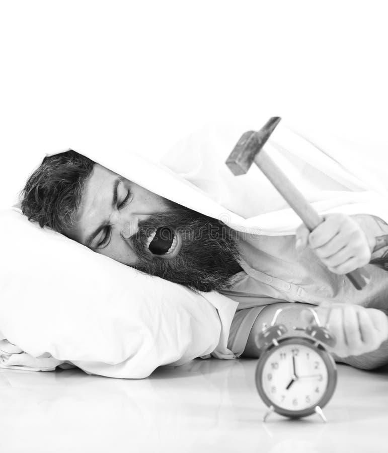 De mens lijdt in ochtend, vernietigt wekker, witte achtergrond stock foto's