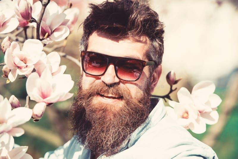 De mens met baard en snor draagt zonnebril op zonnige dag, magnoliabloemen op achtergrond Het concept van de manier De kerel ziet royalty-vrije stock foto's