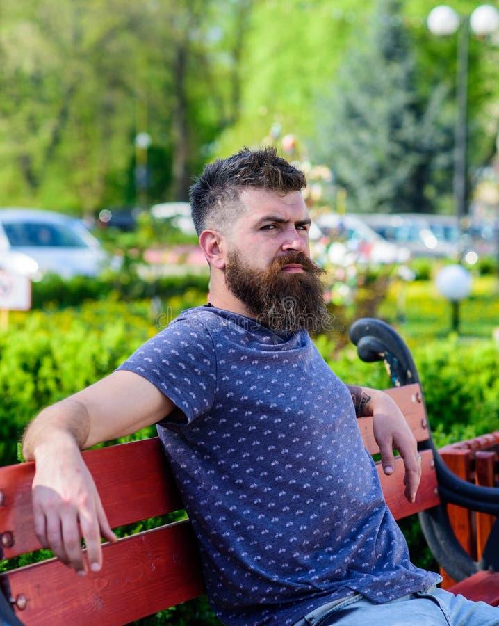 De mens met baard en snor op strikt gezicht zit op bank in park De rust en ontspant concept Hipster geniet binnen van zonnige dag royalty-vrije stock fotografie