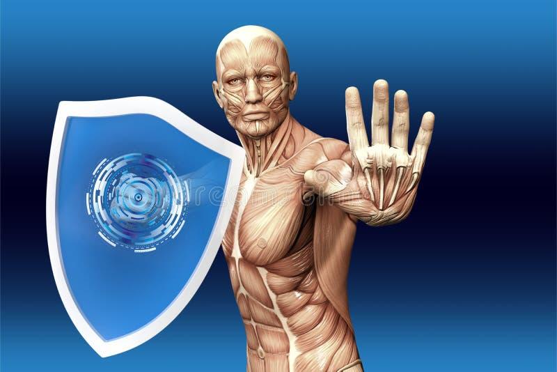 De mens met een schild (anatomische visie) is beschermd tegen ziekte royalty-vrije illustratie