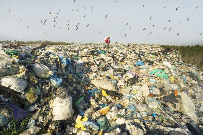De mens met een zak neemt afval op stock afbeelding