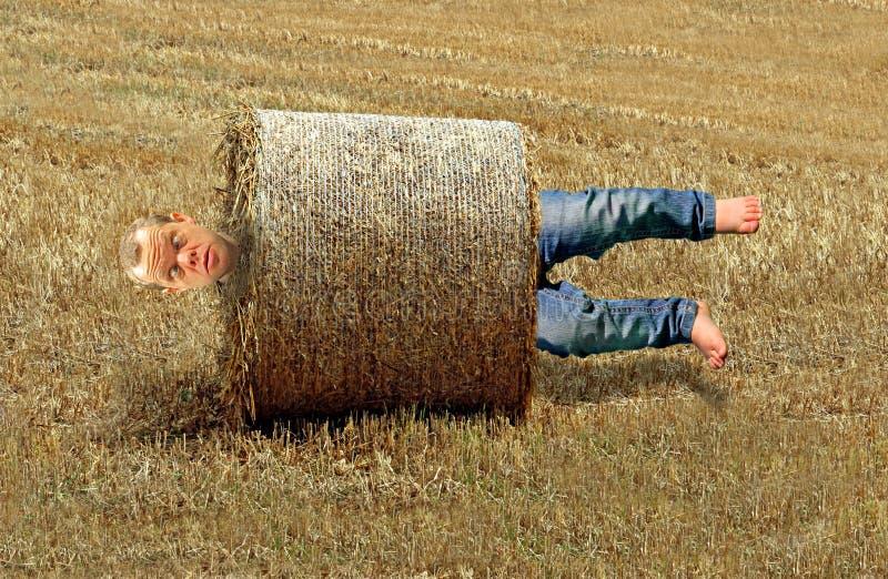 De mens rolde omhoog in de baalongeval van het de landbouwhooi dat tussen een rots en een harde plaats wordt geplakt stock afbeelding