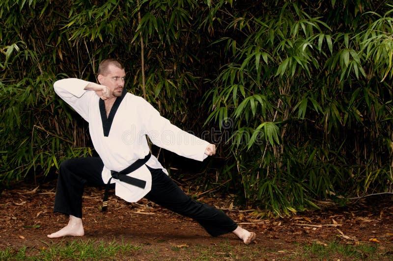 De Mens van de karate stock afbeelding