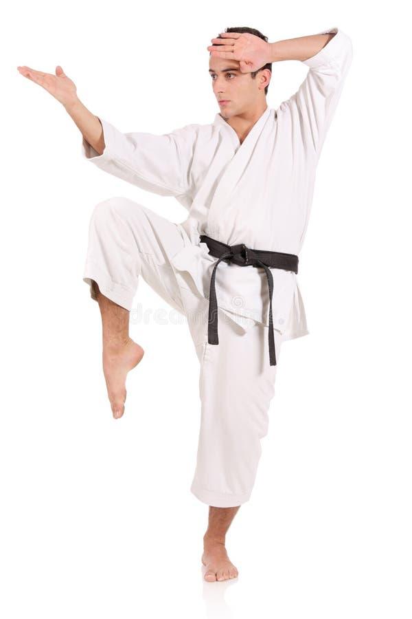 De mens van de karate royalty-vrije stock foto